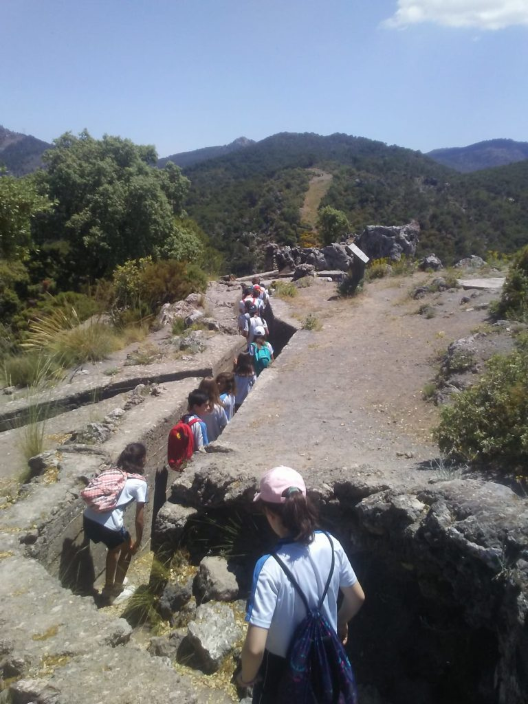 tren del patrimonio_maullo