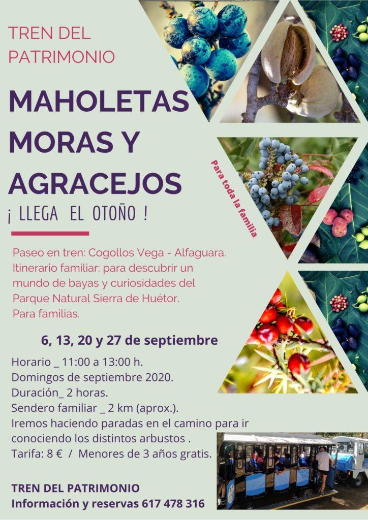 MAHOLETAS MORAS Y AGRACEJOS