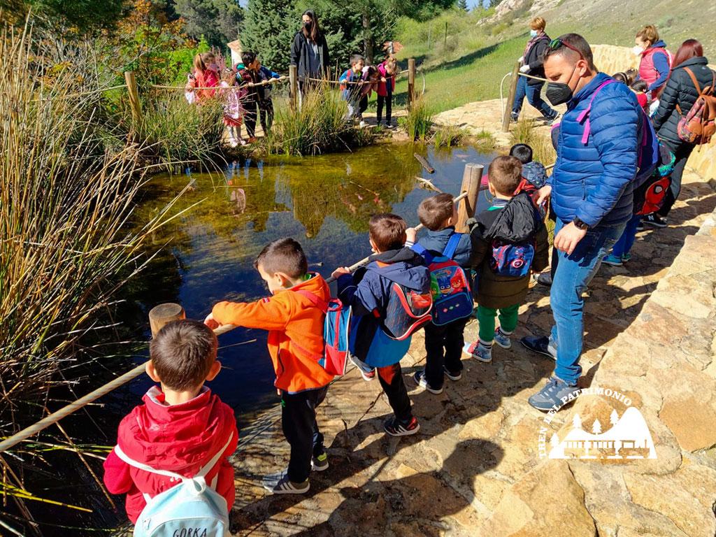 FuentesManantiales_Observatorio de anfibios