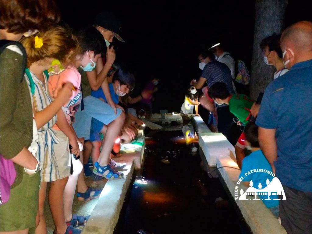 Tren del Patrimonio Habitantes de la noche 05