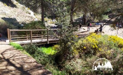 Tren del patrimonio García Lorca en la naturaleza